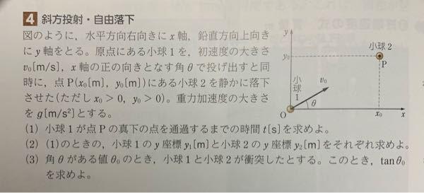 (3)の解き方を教えてください。斜方投射の問題です。