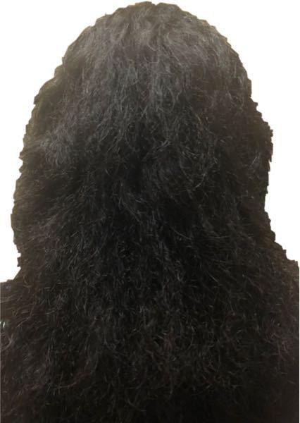 髪のチリチリがエグすぎてやばい!!!笑 (写真は後ろ姿) 私は中学生なんですが、小学5年生からこんな髪型に悩まされています。 トリートメントとかシャンプーとかはほとんど効果なし…。アイロンでなんとかしてますがそれでもチリチリしてきます。でも髪の内部っていうかそこら辺はまだサラサラしてます。 癖というよりチリチリがやばいです。 小五のころある日突然こうなったんですよ… !縮毛矯正は親と学校が禁止してるのでできません! 何か良い方法を教えてください<(_ _)>