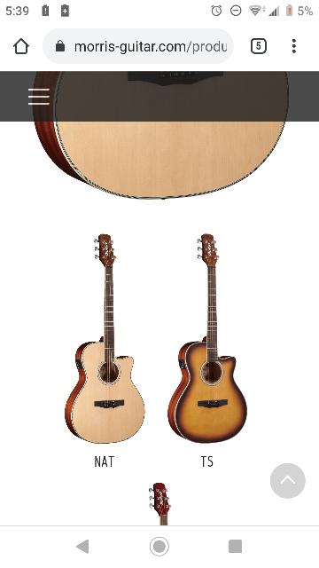 ギター初心者です。質問させてください。 このNATとTSの違いはカラー以外に何かありますか?