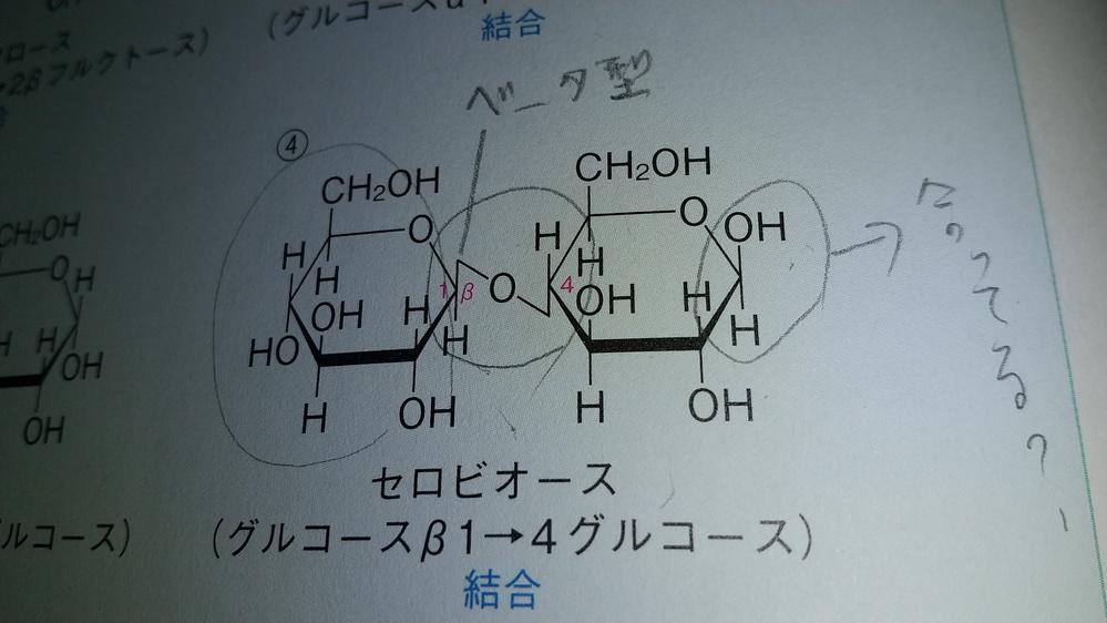 セルビオースの構造式について質問です。画像の右、グルコースの構造式合ってますか?OHとH上下逆では?