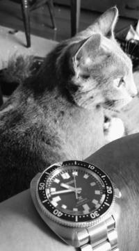 今日の貴方の時計は何ですか?