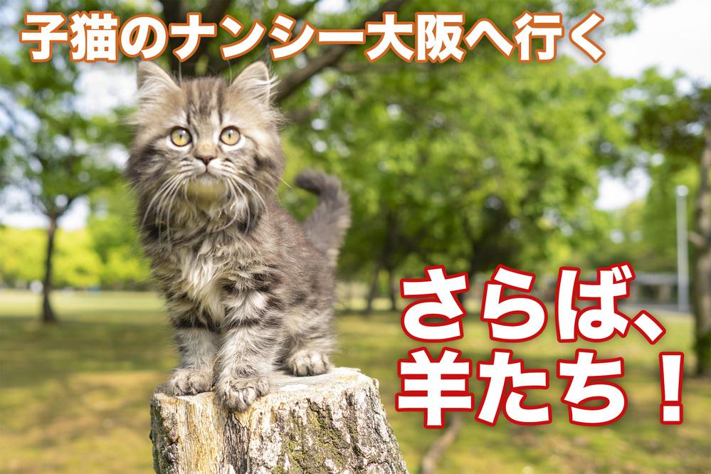 Youtubeにねこ動画をアップしたのですが、全然再生されません! コロナ禍で自宅にいる時間も増えましたので、映像制作も得意で、猫がたくさんいるので、シリーズ?で猫動画をアップしようと考えたのですが、あまりにも再生されないので2本目を上げるモチベーションを失っています。 Youtubeなどにお詳しい方々にアドバイスがいただきたいです。 よろしくお願いします。 動画のURLはコチラです! https://youtu.be/OrkCC_m3o3c