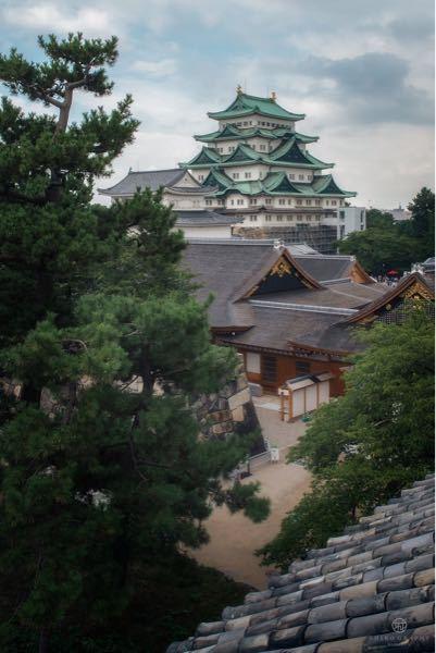 写真は名古屋城です。SNSで拾いました。これどこから撮ったかわかる方いませんか?屋根の上に登ったのでしょうか。