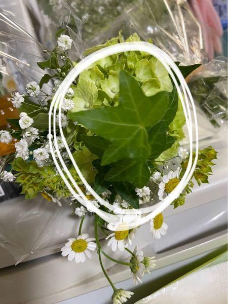 結婚式の最後に新郎新婦の席にあった花で花束を頂きました。その中に入っていたこの葉っぱの名前が知りたいです。友人がアイビーじゃない?育てられるよ。と言っていたのですが、ご存知の方いらっしゃいますか?