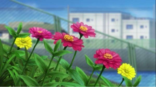 東京リベンジャーズに出てきたこの花はなんという花ですか?