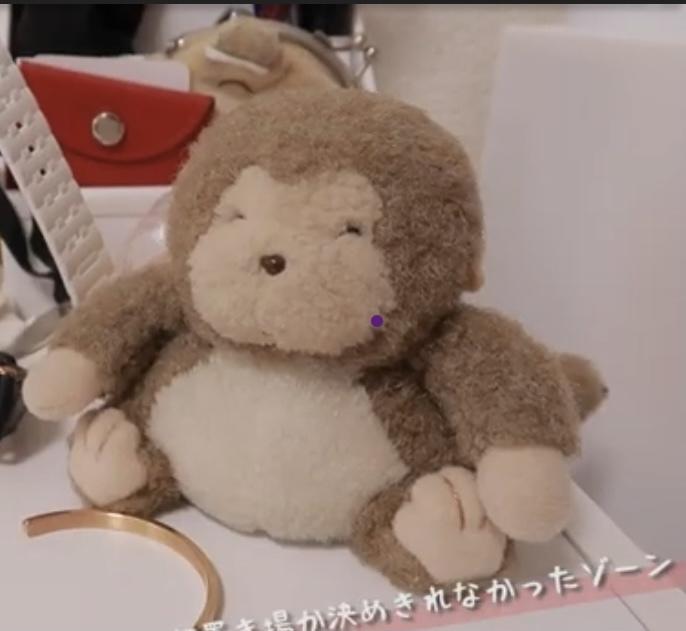 この猿のぬいぐるみ、可愛くて欲しいのですがどこのですか?