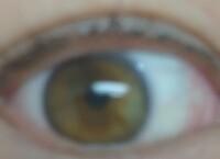 この瞳の色は何色ですか?  友人の目の色がとても綺麗で羨ましくて 撮らせてもらいました  この色は何色ですか?