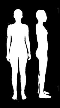 骨格診断お願いしたいです。 プロに予約はしましたが服の購入に間に合わず^^;  腰あたりから撮った写真です。 シルエットから受け取れる印象だけで構わないので、骨格診断をお願いします。  個人的にはウェーブとナチュラルのmixかな?と思っています。鎖骨があるのでストレートではなさそうです。  お尻は一時期鍛えてしまったため診断に影響がないか怖いです。その時の筋トレは、たしか1週間くらいで効果が...