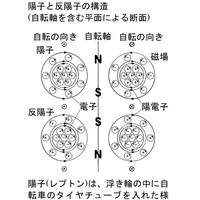 朝日新聞の記事に、ミューオンの磁気的性質が予測と大幅にずれていたというのがありましたが、この問題は、 ミューオンを「重い電子」ではなく「軽い反陽子」と考えることで解決するのではないでしょうか。  https://note.com/abikonobuhiro666/n/n342a9db627e6