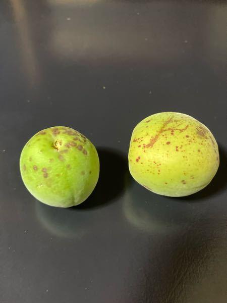 梅の実なんですがこの様になる原因は何でしょうか? どんな農薬が効果的ですか?