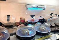 スシローについての質問です。 コロナ禍の現在において回転寿司の飛沫感染が気になります。 きっと他の人も一定数気にしてる人はいると思います。 回転寿司大手のスシローが寿司皿に写真のようなカバーをつけないのは何故ですか?