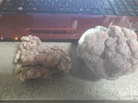 添付画像のサンゴ礁? 恐らく何らかの過程を経て乾燥しライブロックになったのかな???  と、考えているのですが正式名称が解る方いらっしゃいませんでしょうか?  2個共に硬いです。 うすーい赤系の色です。