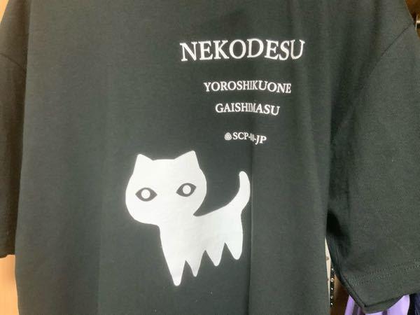 このTシャツどう思いますか?自分はscpが好きでこの服を買ったんですけどやっぱり皆さんは英字Tシャツはダサいって言うイメージがありますか?