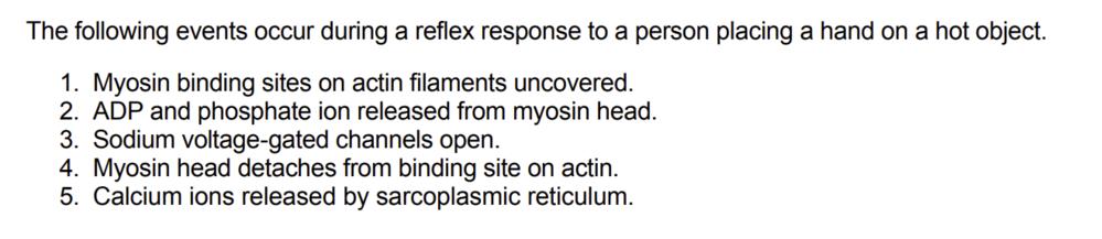 反射応答(脊髄反射?)に関する問題です。正しい順番に並び替えてください。という問題なのですが、わかりません教えてください。
