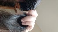 こういうパサパサ髪に合うシャンプーや整髪料などを教えて下さい。