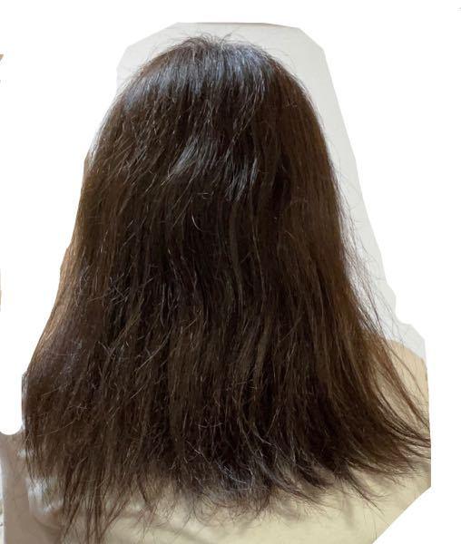 髪の毛がパサパサすぎて辛いです。あとうねってる毛もおおいです。 私の髪はとても太く潤いがありません。 この写真はお風呂上がりで一応洗い流さないトリートメントを付けてから乾かしました。 それでこのパサつきです。 色々調べて シールドエルとかDUOとか試しましたが全滅でした。 それと、枝毛も多いですが先が白くなってる毛とか切れ毛がすごく多です。 縮毛矯正は2回、カラーは3回しました。(明るく→明るく→暗く) ブリーチはしてません。 カラーしてからは潤いもちょっとあってここまでパサパサじゃなかったんですけど、段々パサパサになってきました。 髪の毛下ろすと髪の毛が顔に当たってこそばいです。 パサパサを改善するリンスとかオイルってありますか? 教えて欲しいです(´;ω;`)