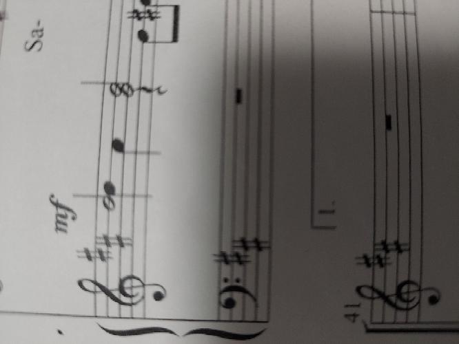 ピアノの演奏方法に着いての質問です。 写真の部分はどのようにして弾くのでしょうか?
