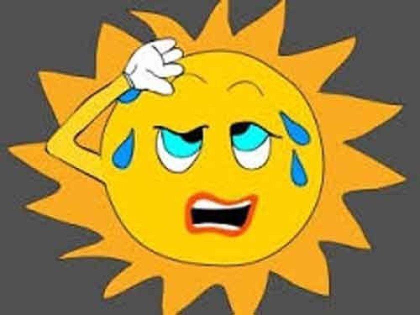 シニアの方が 暑い日の外出に 必ず持っていくものは何ですか?