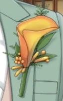 この花の名前がわかる人いますか?