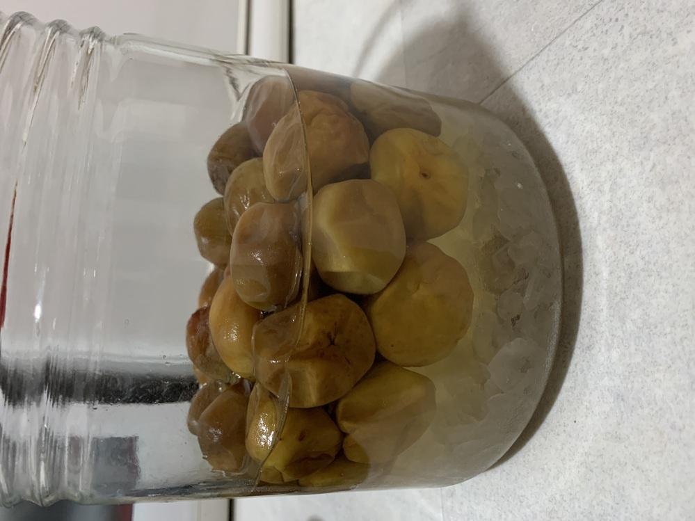 梅シロップについてお聞きしたいです。 6/12に少し熟れた梅を購入し、 梅1kg、氷砂糖1kg、りんご酢150mlで シロップを作りました。 梅はヘタを取って洗って しっかり拭いて冷凍したのですが、 冷凍したら風味が落ちると言うのを見たので 1時間だけ冷凍して霜を拭いて瓶に詰めました。 去年の青梅の時より 氷砂糖が溶けるのがものすごく早くて 発酵してるのか心配です。 昨日蓋を開ける際にポン!と音が鳴りましたが、 匂いを嗅いだ所、アルコール臭もせず 泡も出ていません。 青梅より熟れた梅の方が シロップになりやすいのでしょうか? 3日目にして写真の様な感じだと 発酵してますか? あと2週間程置いてから 飲みたいと思っているのですが、、、。