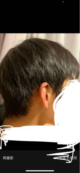これくらいの髪の毛の長さで井上尚弥選手のような髪型はできますか?