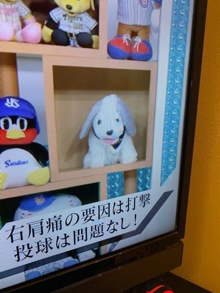 NHKの夜にやっているテレビ番組「ワースポ」にて飾られている画像の犬のぬいぐるみはどこの球団のマスコットキャラクターになるのでしょうか? 調べましたか、出てこなかったのでご質問させていただきました。 よろしくお願いします。