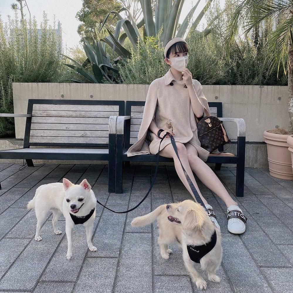 この二匹の犬種わかりますか? ペットショップでは仔犬でいくら位しますか?