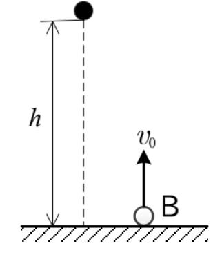 図のように、地面から高さh=78.4mの位置から小球Aを静かに放すと同時に、地面から小球Bを鉛直上方に速さv0[m/s]で投げ上げたところ、 二つの小球は同時に地面に達した。 重力加速度の大きさをg=9.80m/s^2として、このときの小球Bの速さv0[m/s]を求めよ。ただし、二つの小球は同一鉛直線上にないものとし、空気抵抗は無視する。