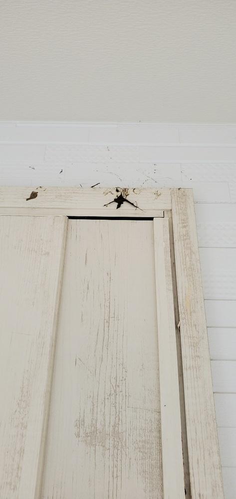 以前、つばめの巣のお手伝いのことで質問しました。 その後は、板を外すとまた戻って来ました。 それからずっと寝泊まりだけをしているようでしたが、昨日寝泊まりしている所の下に藁が落ちているのを見つけました。見上げて見ると、どうやら巣を作ろうとしているみたいです。しかし、全然出来てないです。やはりこの場所だと巣を作りづらいのでしょうか?1ヶ月強寝泊まりして、せっかく巣を作る気持ちになってきたのに、そこに巣を作れなかったら可哀想なので、何か出来ることがあればお手伝いしたいので教えてください。
