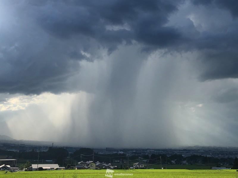 雨柱は地球の温暖化もあるのでしょうか?
