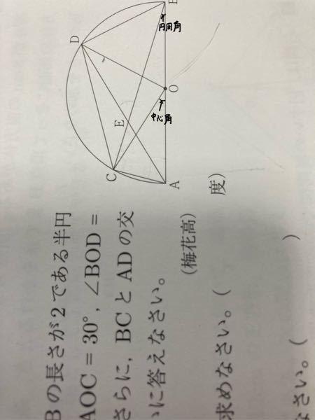 この中心角がなぜ中心角になるのかわかりません。