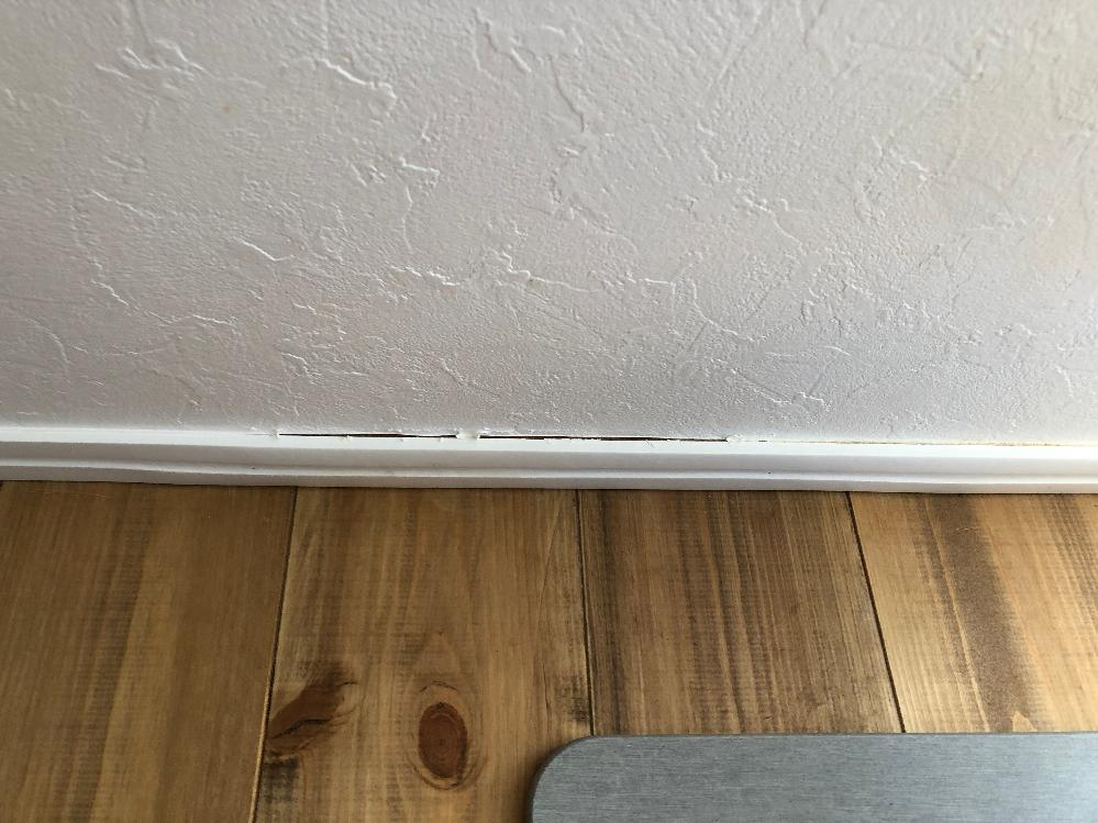 無垢の床の家です。 飼い猫の水入が壁際にあったのですが、どうも水遊びを毎日していたみたいで、近くの幅木や床に水が染み込んでいました。多分半年くらいずっとです。 気づいたときには幅木が膨らんでいて、隙間もできていました。 コーキングしましたが、剥がれてしまい、今はマスキングテープで補修しています。 水入れの場所は気づいてすぐ変えましたが、今後この場所を、このままにしていいのでしょうか。もう一度殺虫剤を注入し、コーキングしようと思ってますが、染み込んでしまった水分はどうしたらいいのでしょうか。 ここから家が腐っていったりしないのでしょうか…かなり心配です。 写真は幅木と壁の間にできた隙間です 今はここにマスキングテープを貼っています。