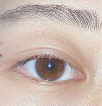 【写真あり】 目頭って蒙古襞とかいろいろあると思うんですけど、 私の目ってなんですかね、??分からなくて、 誰か教えてください!!