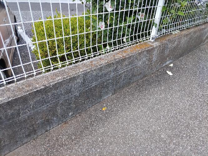 修繕費用について ※画像貼るための再投稿です。 他者のマンションのコンクリート塀(道路側)に車を擦ってしまいました。(狭い道で切り返しをしようとしてのことです。もうちょっと慎重にすれば。。) ひとまず管理人の方と警察へ連絡して事故手続きしました。 後に管理会社の方から連絡が来るとのこと。 コンクリート塀には白い擦り傷。 車の方は変形なく、塗装が剥げた程度です。 事故としてもコンクリート塀の擦り傷として処理されます。 この場合、コンクリート塀の修繕費用とかはどれほど請求されるのでしょうか。。保険はあまり使いたくなく。。 ※前の投稿でご回答くださった方々ありがとうございます。改めてご教授の程よろしくお願いいたします。 二本線が見えるかと。