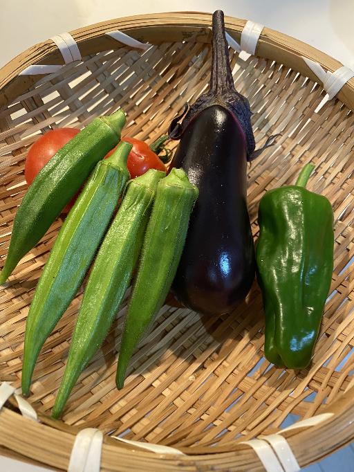 朝採りたてのお野菜です! 皆さんの、好きなお野菜は何ですか?