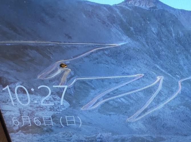 この犬の絵のような山岳道路が有るのは何処ですか? Bing からの画像です。