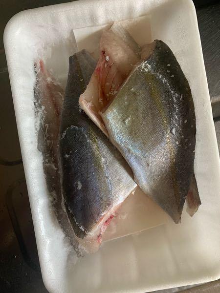 至急お願い致します! 主人が同じ職場の方から釣ったお魚の切り身を頂いてなんの魚かわからず困っています。 これはなんの魚なのでしょうか??