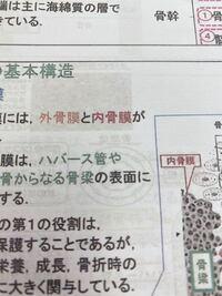 漢字の質問です!(の表面に)の左にある漢字はなんて読むんですか?(><)