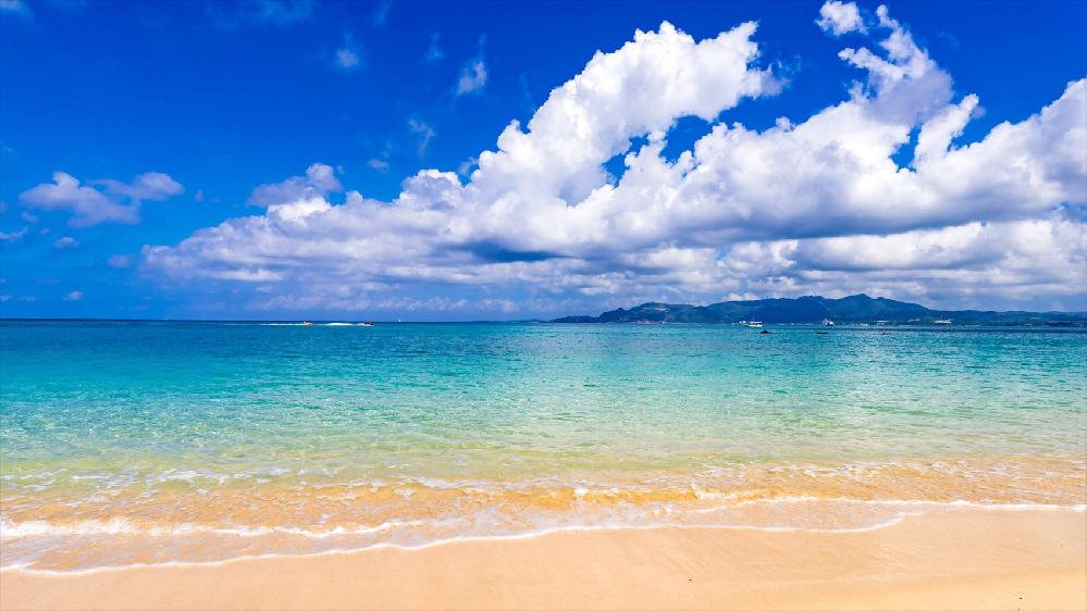 沖縄の食べ物と聞いて、思い浮かぶものは何ですか?