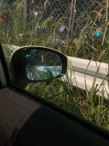 車でサイドミラーが草に当たるのでさえ、 嫌がる人いませんか? 神経質?新車だから?