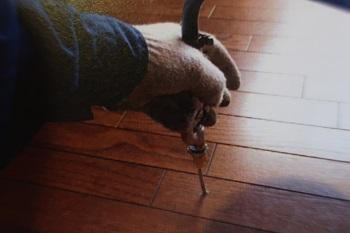 へーベルハウスの白蟻メンテナンスについて教えてください。 契約前には聞いていなかったのですが、築10年で白蟻のメンテナンスを勧められています。送られて来た資料を見たところ、この写真が気になりました。床に穴を開けて液体の薬剤を注入するのですが、このような居住空間に穴を開けて断熱性とか気密性とか問題はないのでしょうか?あと、ここからの薬剤の漏れ(毒性)も気になります。 ※連続基礎の為、基礎で回りが囲まれており、床下に人が入る事が出来ない、手が届かない場所はこうするしかないようです。また、点検口や外の通気口からも撒くそうです。