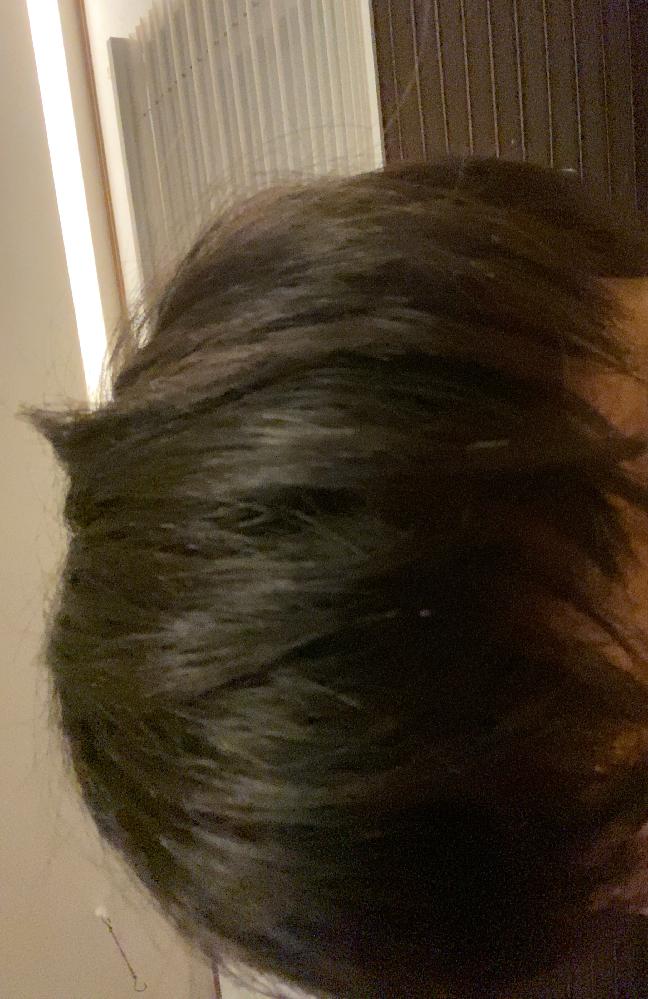 高校3年生です。 この髪の毛の長さならどんな髪型がオススメですか?まじで教えてください