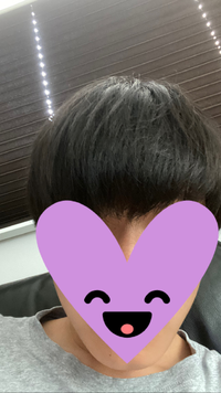 この髪の毛でセンター分け センターパートはできますか?