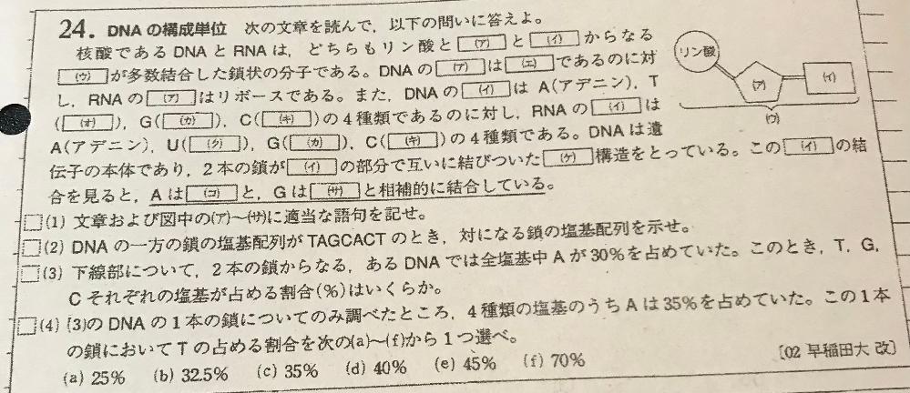 生物基礎です。 (4)が分からなくて困ってます...どのように解くのでしょうか?