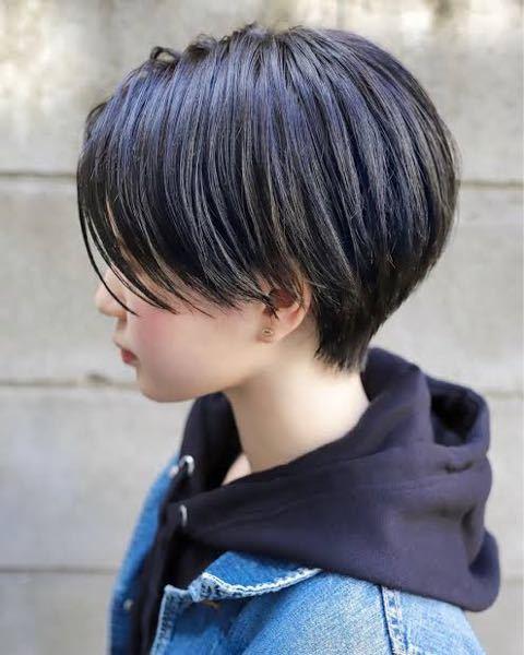 急ぎで! 下のような髪型でわかめちゃんカットになりませんか? 毛量は多い方です、、、。 今は耳掛けショートで襟足は刈り上げていません。