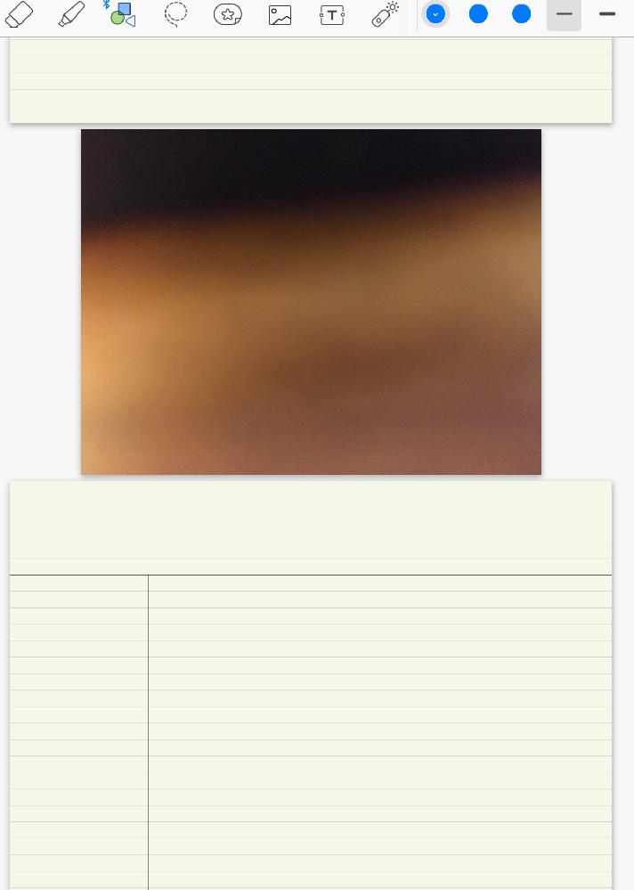 ipad pro goodnotes 5 間違いでシャッター切れてしまった 画像の通りページの間?にシャッターが落ちて張り付いてしまい削除の方法がわかりません。
