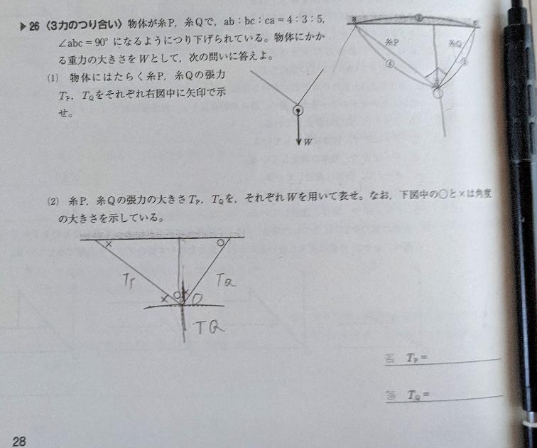 物理基礎 解答と解説お願いします。 どのように力を表せば良いのかわかりません