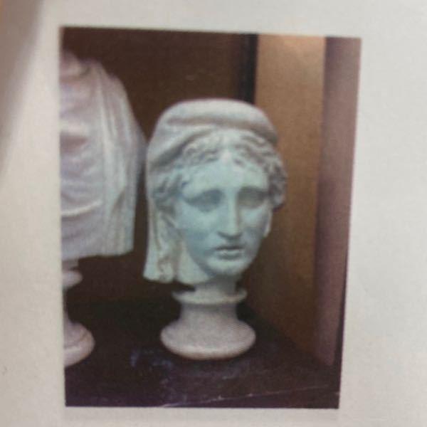 石膏像についての質問です この写真の首像はなんという名前の像ですか?? 分からなくて困っています わかる方よろしくお願いします!