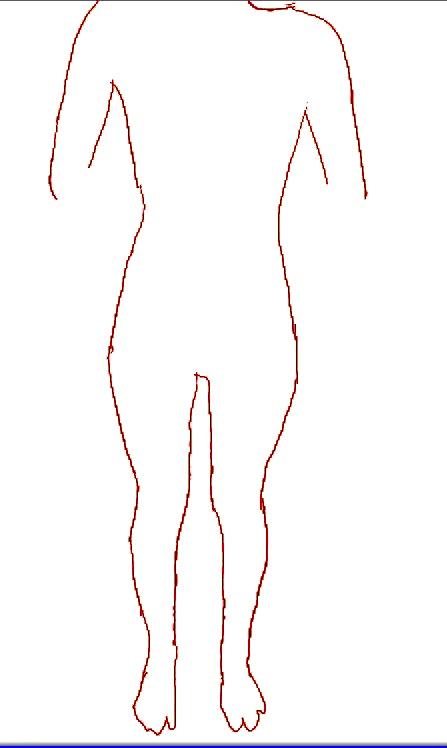骨格のことについてです。 私の骨格はウェーブ、ストレート、ナチュラルのうちどれに入りますか? ↓画像
