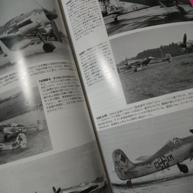 なんで↓頃のドイツ機って 「異様」 な迫力と 「異常」 な魅力があるのですか? シロートにも判りやすく教えてください
